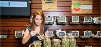 How to Land a Job as a Budtender
